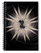 Birth Of A Star  Spiral Notebook