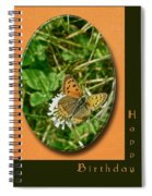 Birthday Greeting Card - American Copper Butterfly Spiral Notebook