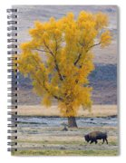 Bison And Cottonwood Spiral Notebook