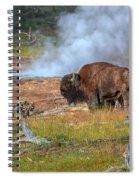 Bison Mud Spiral Notebook