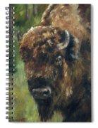 Bison Study - Zero Three Spiral Notebook