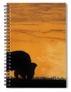 Bison Sunset Spiral Notebook