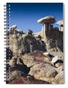 Bisti Badlands 5 Spiral Notebook