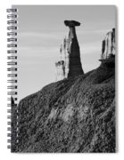 Bisti Land Form 1 Spiral Notebook