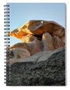Bisti Land Form 2 Spiral Notebook