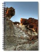 Bisti Land Form 3 Spiral Notebook
