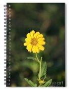 Bit O Sunshine Spiral Notebook