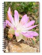 Bittterroot IIi Spiral Notebook