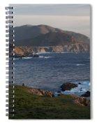 Bixby Bridge And Cows Spiral Notebook
