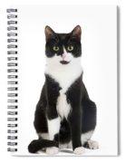 Black & White Cat Spiral Notebook