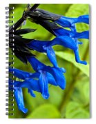Black And Blue Salvia Spiral Notebook