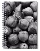 Black And White Acorns Spiral Notebook