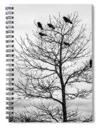 Black And White Blackbirds  Spiral Notebook