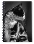 Black And White Cat In Profile  Spiral Notebook
