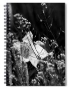 Black And White Daffodil Spiral Notebook