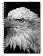 Black And White Eagle Spiral Notebook