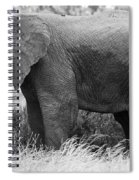 Black And White Elephant Spiral Notebook