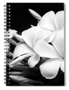 Black And White Lightning Spiral Notebook