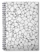 Black And White Lines Spiral Notebook