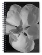 Black And White Magnolia Blossom Spiral Notebook