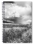 Black And White Meadow Spiral Notebook
