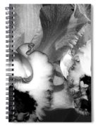 Black And White Orchids Spiral Notebook