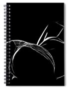 Black And White Pleasure Spiral Notebook