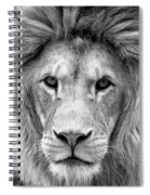 Black And White Portrait Of A Lion Spiral Notebook