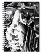 Black And White Ruffles Spiral Notebook