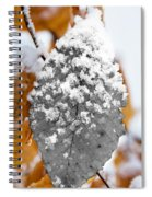 Black And White Snow Leaf Spiral Notebook