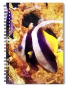Black And White Striped Angelfish Spiral Notebook