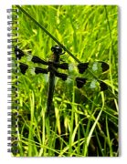 Black And White Winged Dragonfly Spiral Notebook