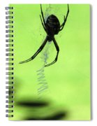 Black And Yellow Argiope - Spider Silhouette 02 Spiral Notebook