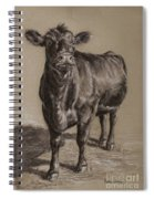 Black Angus Cow 1 Spiral Notebook