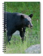 Black Bear Female Spiral Notebook