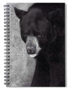 Black Bear Pose Spiral Notebook