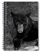 Black Bear - Scruffy - Black And White Cropped Portrait Spiral Notebook