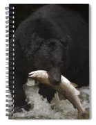Black Bear With Salmon Spiral Notebook