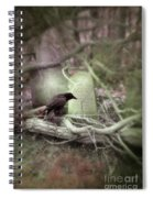 Black Bird In Forgotten Graveyard Spiral Notebook