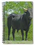 Black Bull Spiral Notebook