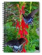 Black Butterflies Spiral Notebook