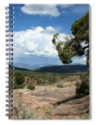 Black Canyon Juniper Spiral Notebook