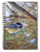 Black-capped Chickadee Spiral Notebook