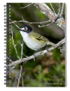 Black-capped Vireo Spiral Notebook