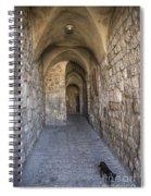 Black Cat In Jerusalem Israel Spiral Notebook