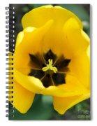 Black Center Spiral Notebook