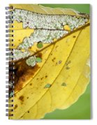 Black Cherry Leaf Spiral Notebook