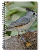 Black-crested Titmouse Spiral Notebook