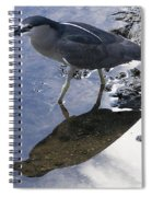 Black Crowned Night Heron And Shadow Spiral Notebook