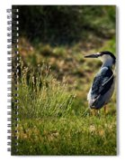Black-crowned Night Heron At Carson Lake Wetlands Spiral Notebook